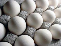 Eggs (43)
