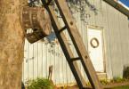 Orchard Farm Ladder