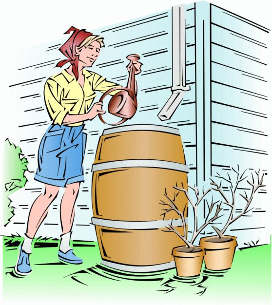 Build Your Own Eco Friendly Rain Barrel