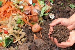 Urban Kitchen Composting