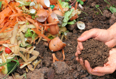 Composting 1