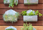 Garden Shed Wall with Herbs