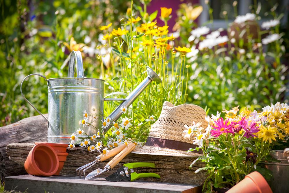 Gift Ideas For A Gardener