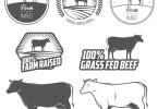 Grassfed Organic Beef