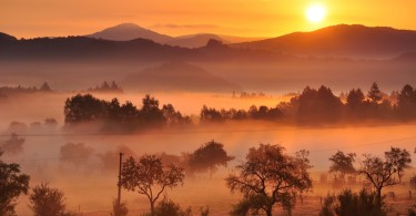 Sunset and Fog In Autumn