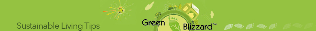Green Blizzard – Green Living Tips