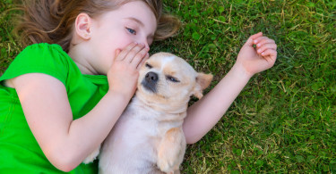 girl wispering to dog